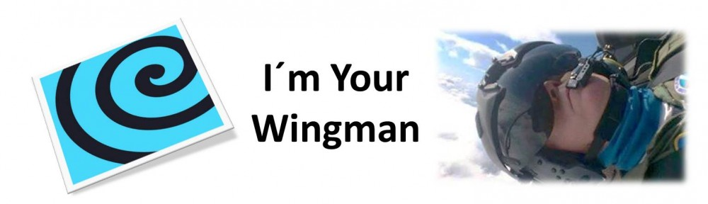 Im Your Wingman - Header
